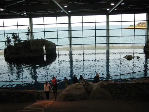 The Shedd Aquarium is beautiful. | by InternetGeekGirl