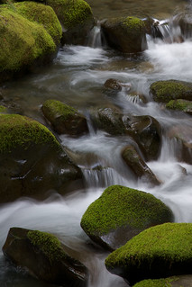 On the Rocks | by Andrew R. Whalley