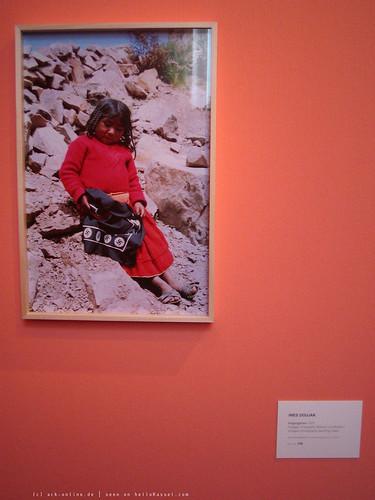 documenta 12 | Ines Doujak / Siegesgärten | 2007 | Neue Galerie | by A-C-K