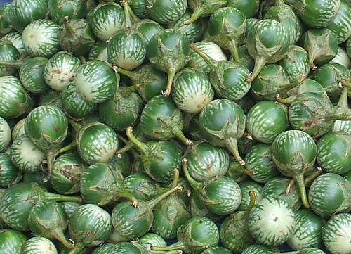 Green and white small eggplants | חצילים בגודל כדור פינג-פונג | by Thai Food Blog