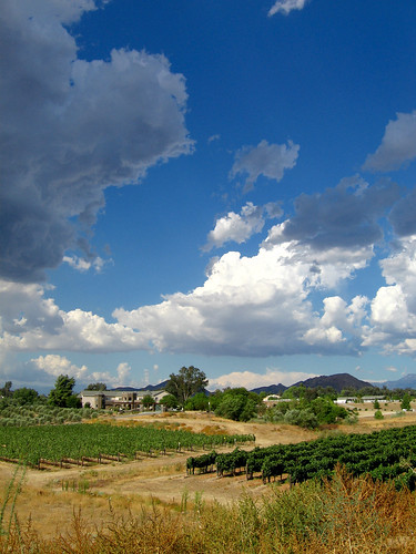 california sky storm clouds vineyards grapes winecountry