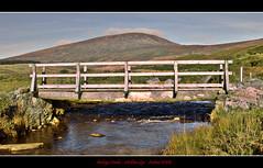 Bridge on the Wicklow Gap   by Rodrigo da Cunha