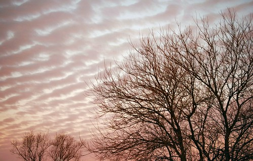 pink trees usa beautiful clouds sunrise wow wonderful geotagged dawn us newjersey am amazing nice interesting fantastic nikon perfect pretty unitedstates gorgeous great nj silhouettes stunning excellent ripples monmouthcounty congratulations incredible bayshore impressive marvelous 2007 welldone nominated unionbeach views700 d80 neloesteves zip07735 abigfave anawesomeshot colorphotoaward geo:lat=40447167 geo:lon=74162188