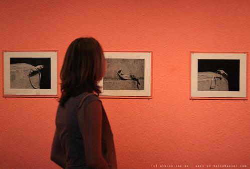 documenta 12   Alina Szapocznikow / Fotorzezba   1971   Neue Galerie   by A-C-K