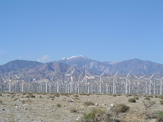 Palm Springs Wind Farm   by dave_mcmt