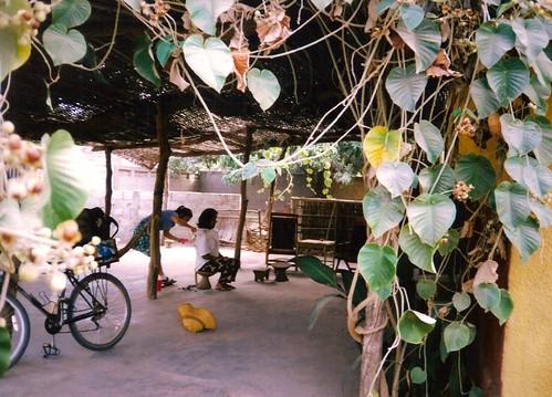 westafrica senegal peacecorps kolda robertdorion