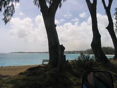 200 - Cottonhouse Bay