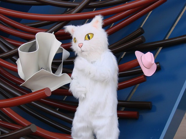 Kitty at the Denver Public Library | Denver Public Library Online