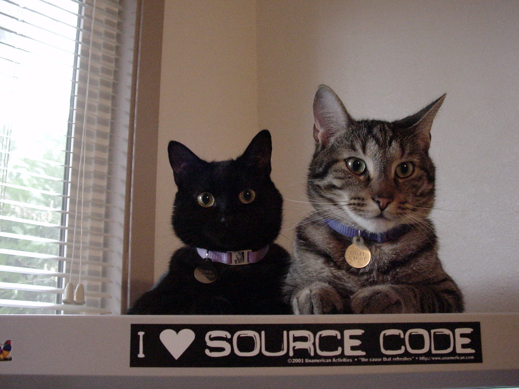 """A black cat and a grey tabby cat sit on top of a gray computer monitor. The top border of the monitor has a black and white sticker with the text """"I <3 source code."""""""