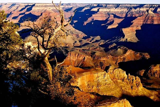 Morning Bliss, Grand Canyon National Park, Arizona