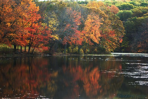 autumn trees reflection fall water geese pentax connecticut ct southfordfalls k200d