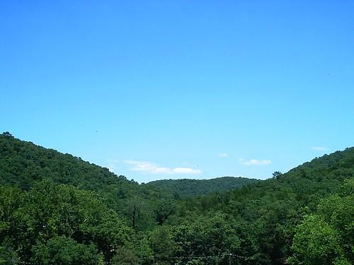 trees green water stone missouri riverhead roaringriverstatepark cassville