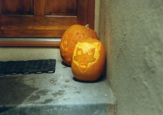 ElfQuest Wolf Pumpkin, Halloween 1995   I Carved A Wolf Pump ...