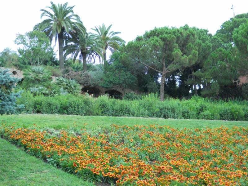 Jardines del Parque Guell