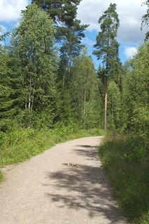 Track to Nedre Blanksjø