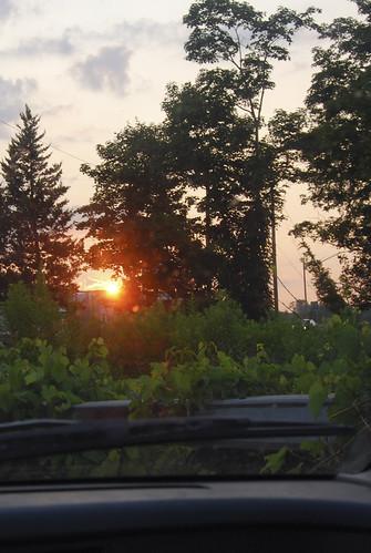 sunset ny car missedabettershot