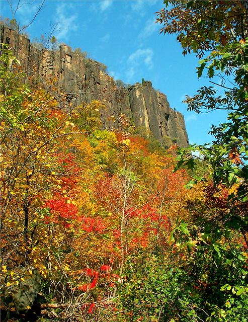 Palisades Cliffs in Autumn