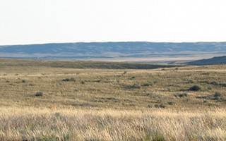 Shortgrass Prairie 1