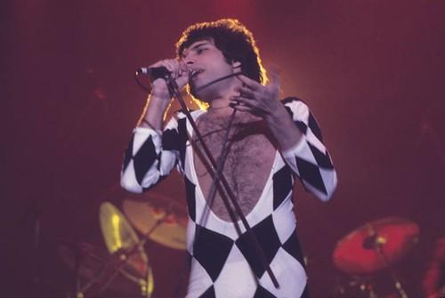 Queen - Freddie Mercury   by CLender