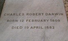 Charles Darwin at Westminster Abbey | by @dino