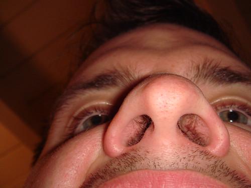 zoom sur les poils de nez