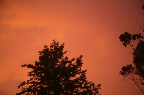 Last night's sky   by jsarcadia