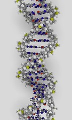 DNA rendering | by ynse