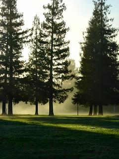 Christmas Hill Park.Christmas Hill Park Gilroy Ca Terri Flickr