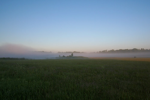 field minnesota fog littlefalls