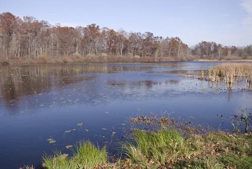 statepark autumn fall nikon michigan holly d200 adobelightroom tamron1750f28 motoroladroid googletracks