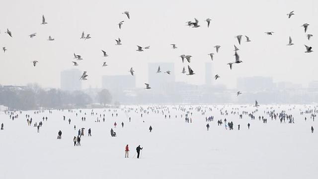 6068 Alstervergnügen im Winter - die Menschen gehen auf der zugefrorenen Alster spazieren - im Hintergrund Gebäude von Hamburg St. Georg; ein Schwarm Möwen fliegt über den zugeforenen See.