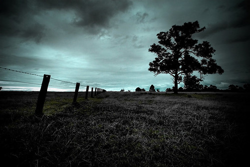sunset grass clouds fence landscapes farm riverstone ultrawideangle canon30d supershot explored anawesomeshot aplusphoto 1022mmf3545usm diamondclassphotographer auselite