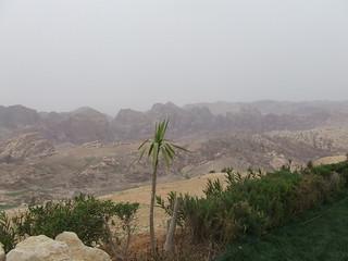 Sinai trip to Petra jordan201