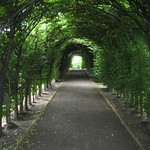 NYC - Staten Island - Sailors' Snug Harbor: Staten Island Botanic Gardens - Allee