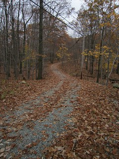 Wildcat Ridge Trail   by syvwlch