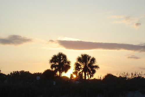 sunset usa sc jaune south palm carolina