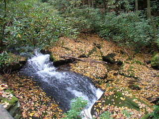 Twentymile Creek Waterfall | by cm195902