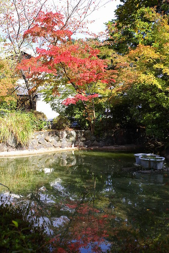 Red Leaves in Kyoto 2006 | by seto
