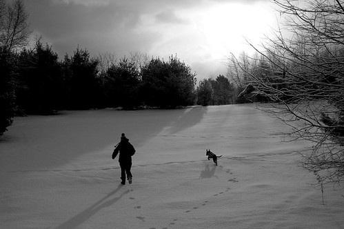 winter vacation blackandwhite bw dog snow cold sunrise d50 puppy nikon vermont walk freezing mansion footprint pawprint thelittledoglaughed