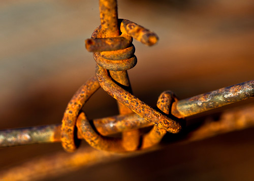 sunset red macro fence wire rust dof farm details rusty 100mm 5dmarkii 5dmk2 5dmark2