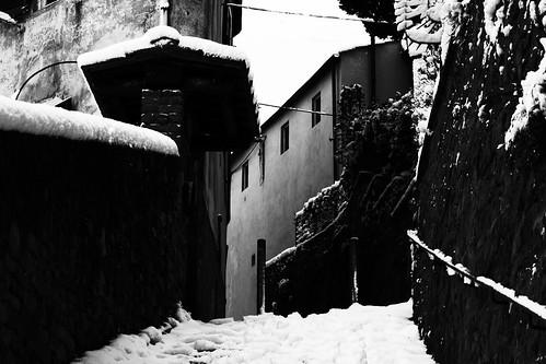 Fiesole - Borgunto