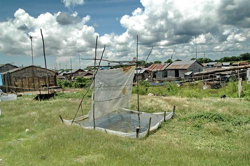 Cricket traps in Cambodia | by stefanottomanski