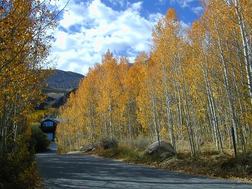 Aspen Sierra Streets