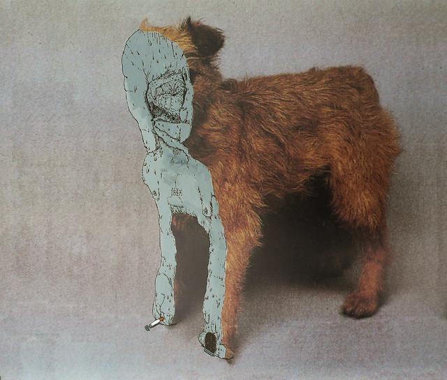 MUDWIG:Teddy's edge 1847