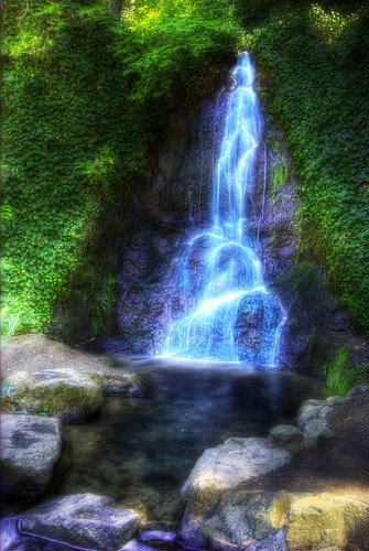 nature forest waterfall washington pacific northwest hdr burchdc
