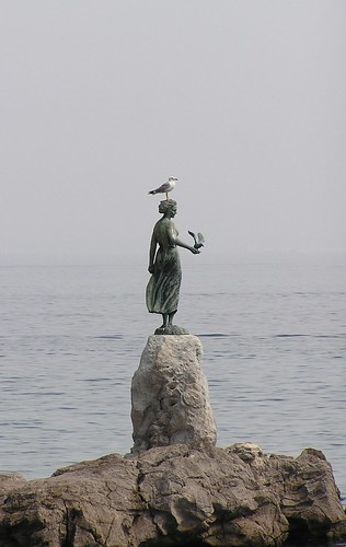 Bird on Head, The Artificial One is on Hand