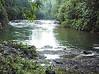 Endau Rompin Johor National Park, Johor
