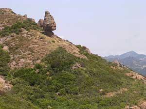 Mount Allen