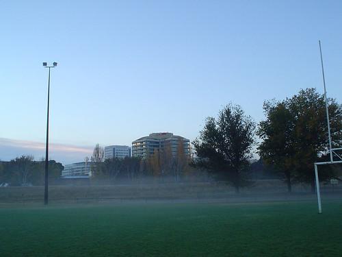 city-of-mists