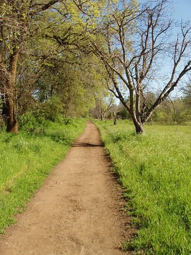 Bidwell Path